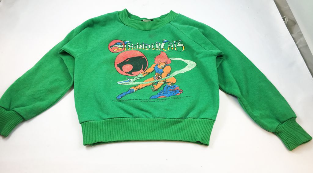 Thundercats (Cosmocats) - Sweat-Shirt Enfant (4-5 ans)