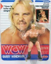 WCW Galoob - Barry Windham (carte Espagne)