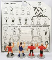WWF Hasbro - Mini Wrestlers : Typhoon, Earthquake, Hawk, Animal (loose avec carte USA)